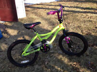 "Girls 19"" bike very gently used"