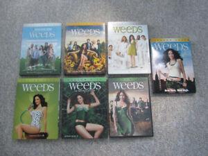 Seasons 1 Thru 7 of Weeds on DVD