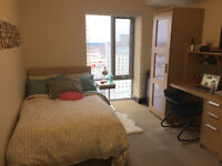 LUXE WATERLOO STUDENT SUMMER SUBLET (MAY-AUGUST)