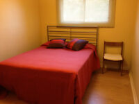 Room available for female tenant