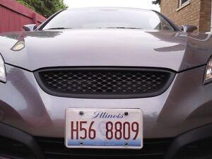2010 Hyundai genesis mesh grill