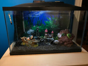 25 gallon fish tank, fully loaded + stand