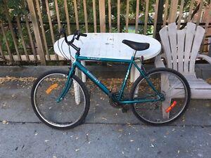 Vélo TRIUMPH VTT