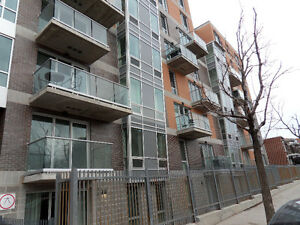 Prestigious 4.5 condo for rent in Villeray (Metro Cremazie)