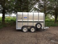 Ifor Williams ( live stock trailer )