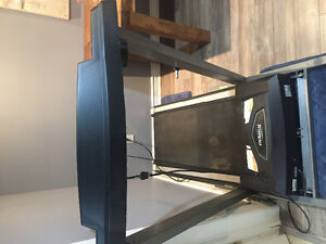 Treadmill (electronic, fully functional, folds up)
