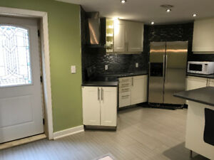 Basement for Rental, Richmond Hill, ON, Modern and Clean, Ravine