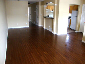 Beautiful 1 bedroom centrally located in Kingston-All inclusive