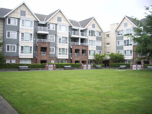 New Westminster Two Bedroom Suite