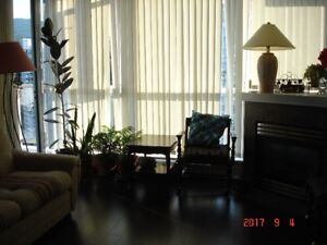 Fully Furnished nice view 2Bed/2B Condo