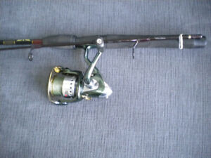 Canne moulinet Fenwick/Abu Garcia, Fishing reel rod