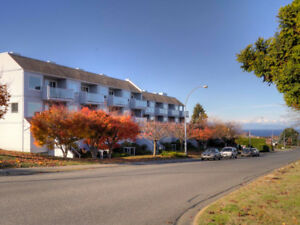 Gorgeous North End Nanaimo 2 Bed Condo for Rent!