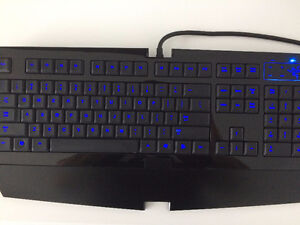 Razer Lycose keyboard Kitchener / Waterloo Kitchener Area image 1