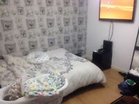 1 bed looking for 2 bed will pay £1000