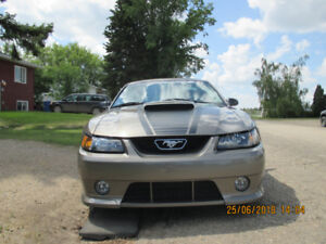 2002 genuine roush stage 2   (supercharged)