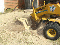 AFFORDABLE STUMP REMOVAL / STUMP GRINDING / ENLEVEMENT DE SOUCHE