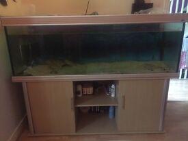 6ft fishtank
