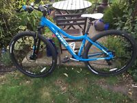 Women's Skye mountain bike