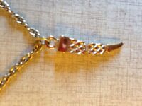 Tooth pendant with chain