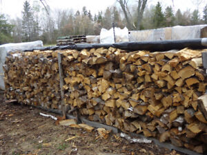 Mixed dry fire wood