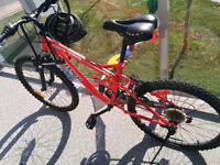 Red raleigh legend mountain bike - price negotiable
