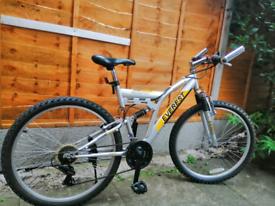 Everest Champion Mountain Bike
