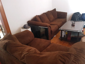 2 couch set and coffee table