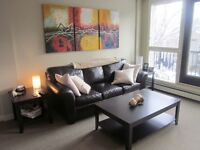 REDUCED PRICE! Fully furnished modern Mission condo