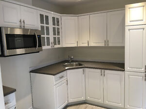 6 1/2 Brand new fully renovated Apartment in Plateau