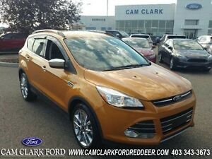 2016 Ford Escape SE  SE Chrome Pkg Navigation Power Liftgate