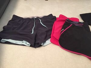 Nike dry fit shorts and puma short