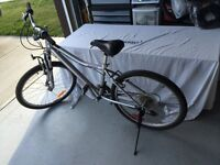 Infinity Cosmo 21 speed mountain bike 15 inch frame wit