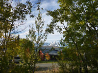Scenic Lots in Haines Junction