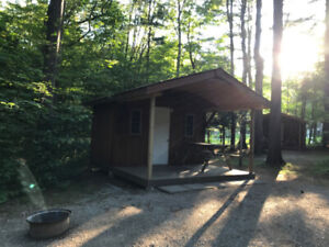 Cabin Camp in Muskoka +Mature Forest +Pool +Park +Kahshe River