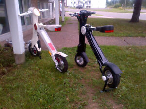 His & Hers Lithium Powered Scooters