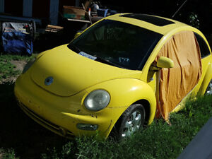 2002 Beetle. Needs TLC   CASH or TRADE