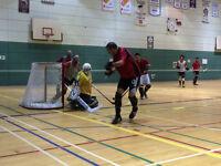 Équipes & Joueurs Hockey Balle (Cosom Balle Blanche) Recherchés