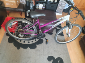 Ladies bike spare/repair £15