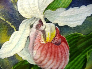 "Original Watercolor by Joan Tovey ""Lady's Slipper"" 1980's Stratford Kitchener Area image 8"