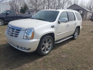 PRICE REDUCED  Escalade for Sale