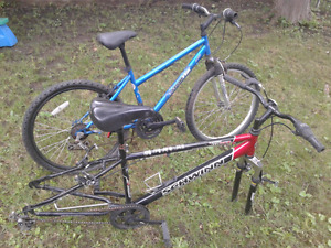 Schwinn frame and sportek mountain