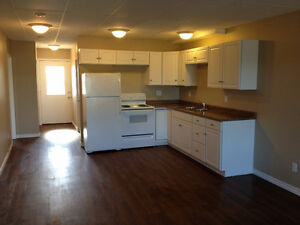 Spacious Fully Renovated 2 Bdr in Val Caron. Available Nov 1st.