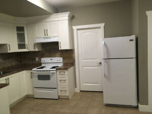 Newer 1 bedroom suite in Cloverdale