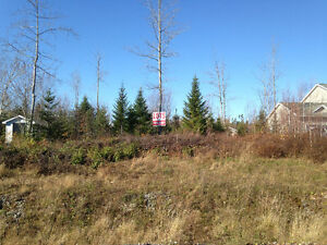 Huge Serviced lot for sale 80x357  in lantz. 12 min. to Airport