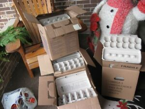 assortment of egg cartons for sale
