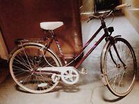 Ladies Vintage Bicycle