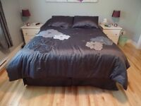 Queen Size Comforter and two pillow shams