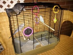 2 CUTE HEALTHY TAME YOUNG BUDGIES WITH CAGE $15.00