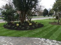 Lawn Care. Spring Clean Up. Property Maintenance. Sod. Mulch.