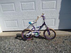 Girls 16 inch bike. Very good condition.